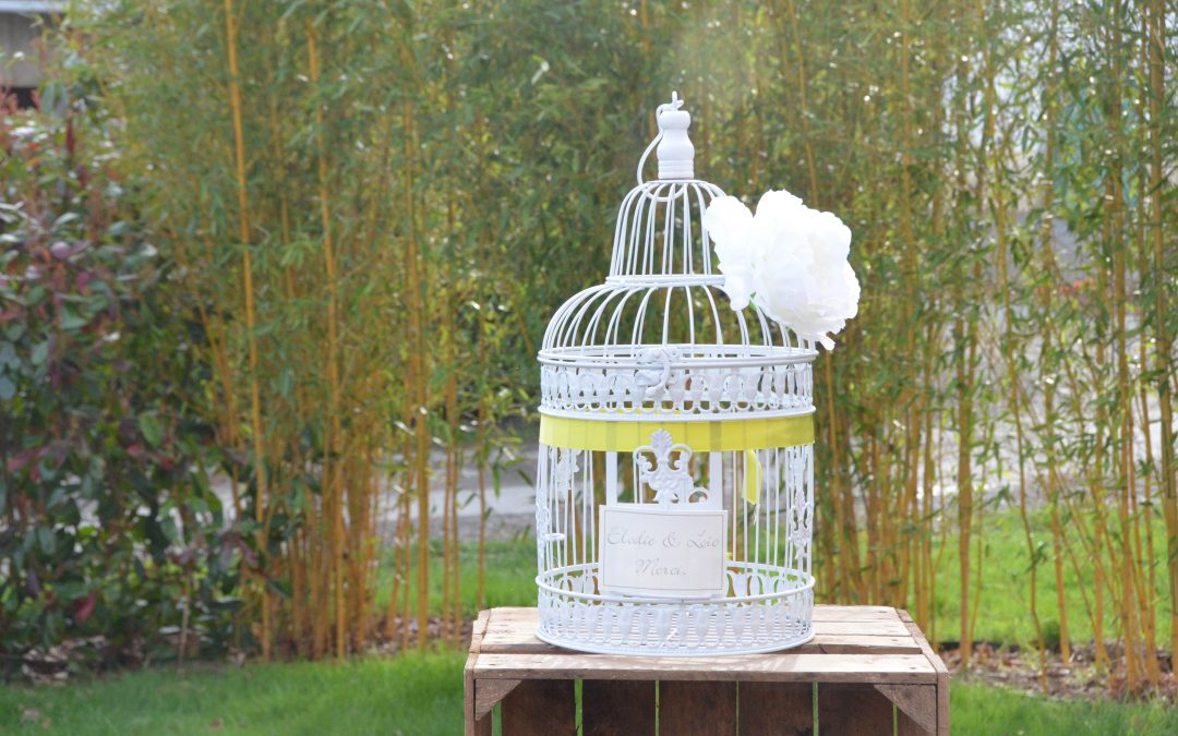 cage à oiseaux blanche: 10 €